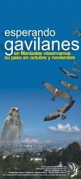 Afiche-Gavilanes-2003