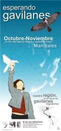 Afiche-Gavilanes-2005