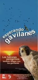 Afiche-Gavilanes-2006