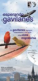 Afiche-Gavilanes-2007