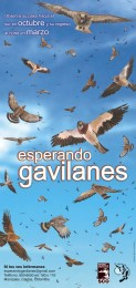 Afiche-Gavilanes-2008