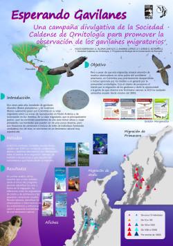 Afiche-Gavilanes-2009-infografia