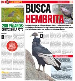 CondorQhuboAgo10_2011