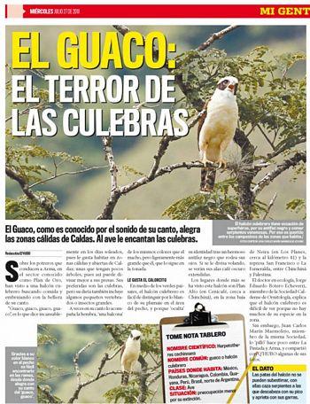 ElGuacoQhuboJul27_2011
