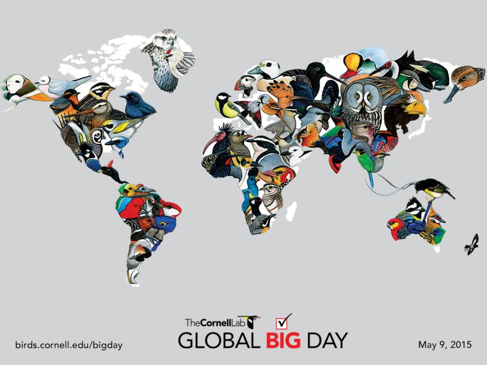 Cornell-Lab-Global-Big-Day-Map