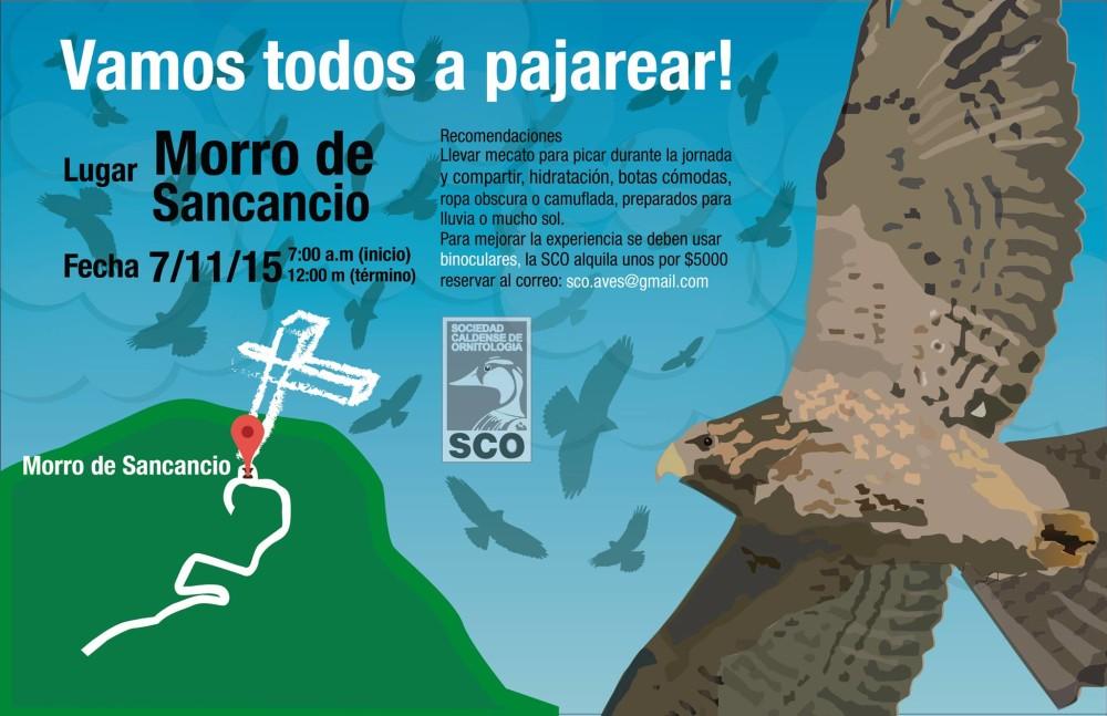 VamosTodosaPajarear-CerroSancancio02