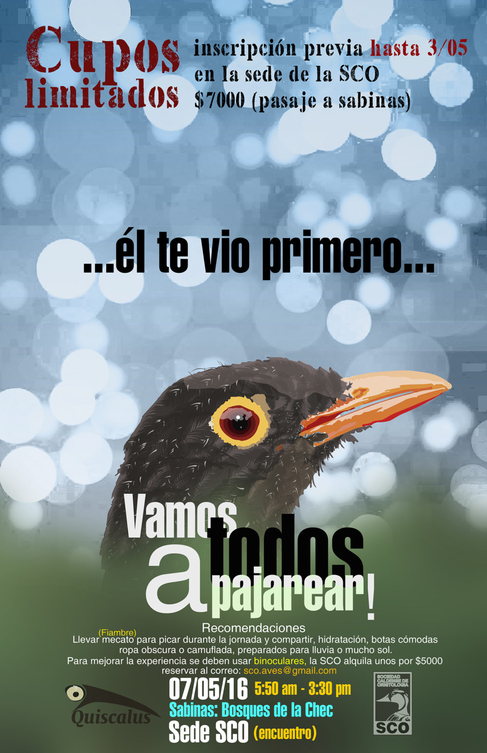 VamosTodosaPajarear-Sabinas-LaChec