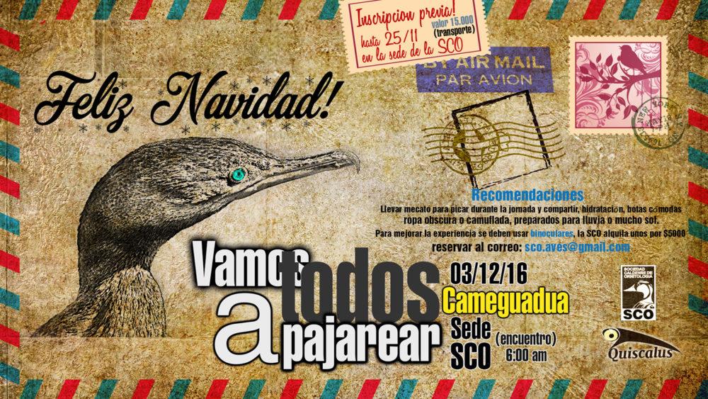 vamostodosapajarear-cameguadua-01